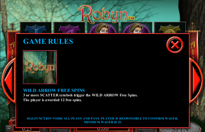 How to Play Robyn by Microgaming